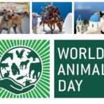विश्व पशु दिवस