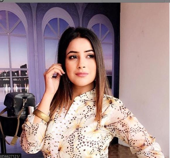 Shehnaz Kaur Gill Wiki Biography