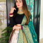 Shilpa Chaudhary Biography Wiki TikTok